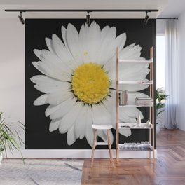 Top View of a White Daisy Isolated on Black Wall Mural