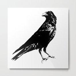 Lone Raven Metal Print