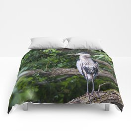 Heron waiting Comforters