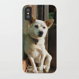 sleepy dog iPhone Case