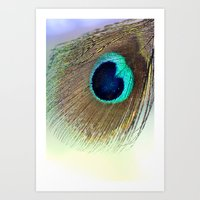 peacock feather Art Prints featuring Peacock feather by Hannah