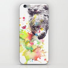 Portrait Of a Grizzly Brown Bear iPhone & iPod Skin