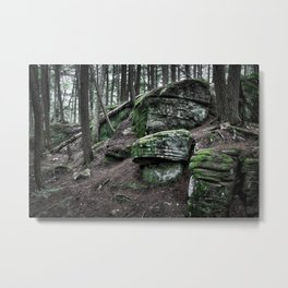 Algonquin Park, Ontario Metal Print