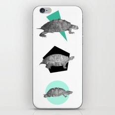 Three Old Turtles iPhone & iPod Skin