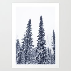 Fir-trees Art Print