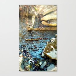Wall of Shale Canvas Print