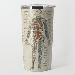 Anatomy Vintage Scientific Illustration French Language Encyclopedia Lithographs Educational Travel Mug