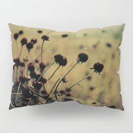 Nature Abstract Pillow Sham