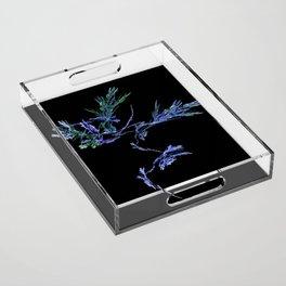Winter Tree Fractal Acrylic Tray