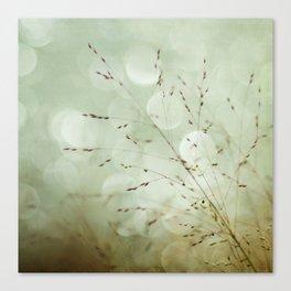 Delightful Dreams  Canvas Print