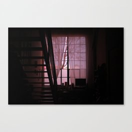 Lookit what the light did now 2 Canvas Print