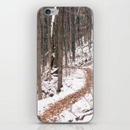 Snowy Path iPhone Skin