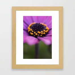 Pink flower, yellow black heart Framed Art Print