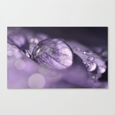 Mother Natures Spring-Jewels Canvas Print