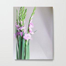 Gladiolus in Bloom Metal Print