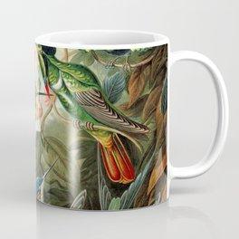 Vintage hummingbirds by Ernst Haeckels Coffee Mug