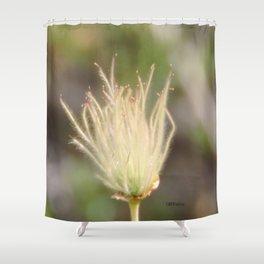 Apache Plume Shower Curtain