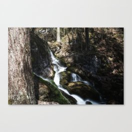 Cascada in lower Austria Canvas Print