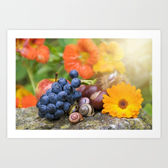 Lovely Autumn Fruits and Flowers in warm Sunlight Art Print