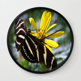 Zebra Longwing Feeding Wall Clock
