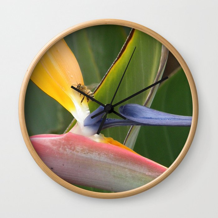 Exiting Paradise Wall Clock