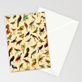 Vintage Birds of Brazil Designs Collection Stationery Cards