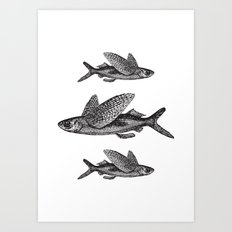 Flying Fish | Black and White Art Print