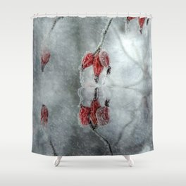 Purple cloak in winter Shower Curtain