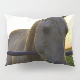 Beautiful Horse at Sunset Pillow Sham