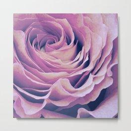 Le pétale de rose pourpre Metal Print