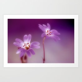 Purple Stitches Art Print