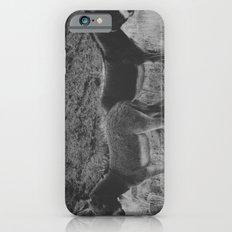 Peach Burros Slim Case iPhone 6s