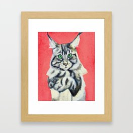 Red Maine Coon Framed Art Print
