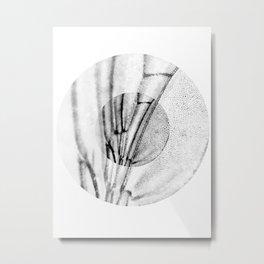 Wing nipple Metal Print