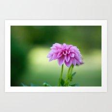 Pink Art Print