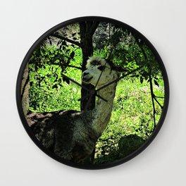 cute  alpaca Wall Clock