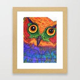 Parrot Owl  Framed Art Print