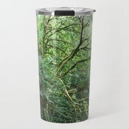 Old Maple Tree Travel Mug