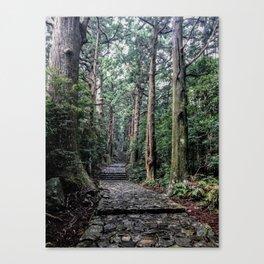 Kumano Kodo Trees Nachikatsuura, Wakayama, Japan Canvas Print