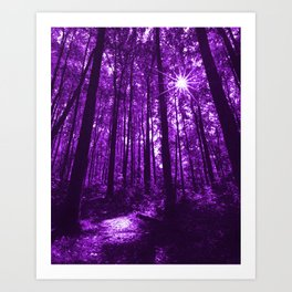 Shenandoah Violet Art Print