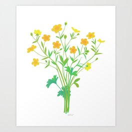 Spring Buttercups Wildflower Illustration Art Print
