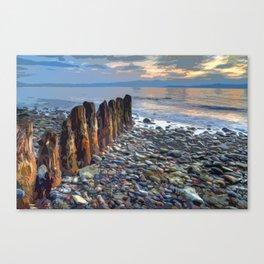 Worn Pilings on Rocky Shoreline  Canvas Print