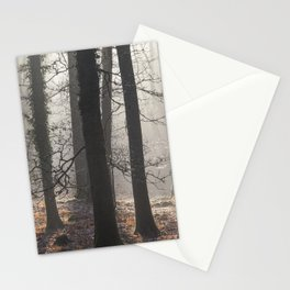 Winter Sunrays Stationery Cards