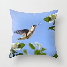 Spring Hummingbird Throw Pillow