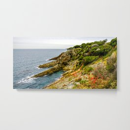 Eagles Claw, Eden, New South Wales Metal Print