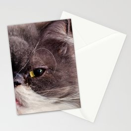Serious Cat Half Face Portrait Stationery Cards