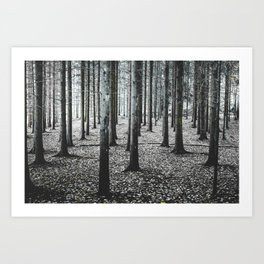 Coma forest Art Print