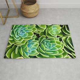 Succulent Geometries Rug