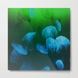 Moon Jellyfish - Blue and Green Metal Print