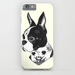 Dog - Tattooed BostonTerrier iPhone Case
